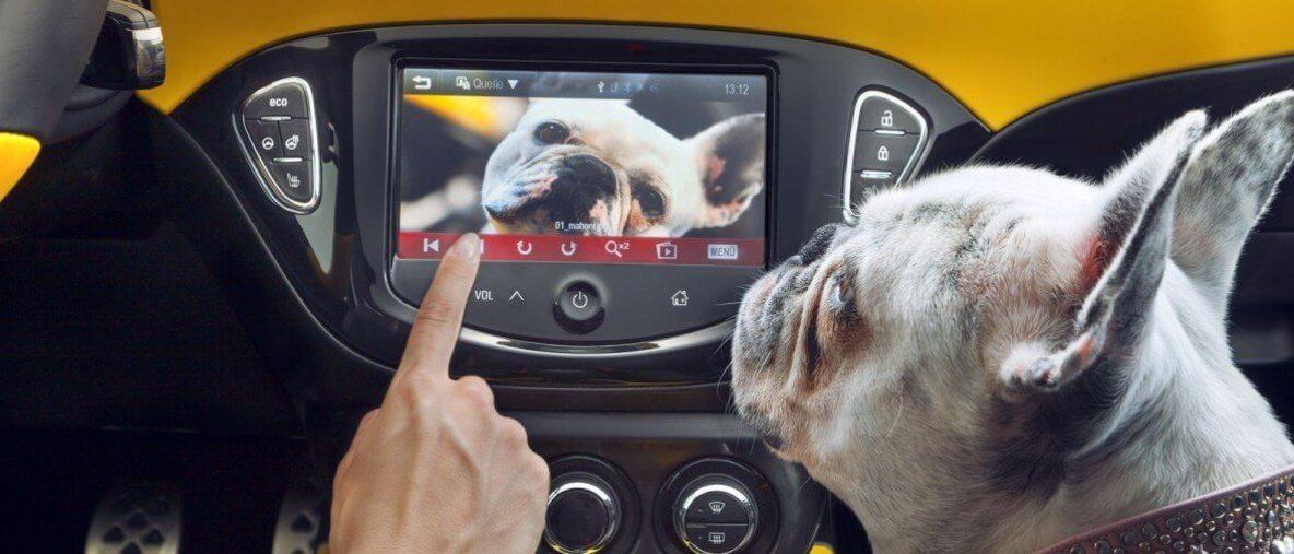 Informații tehnice Opel