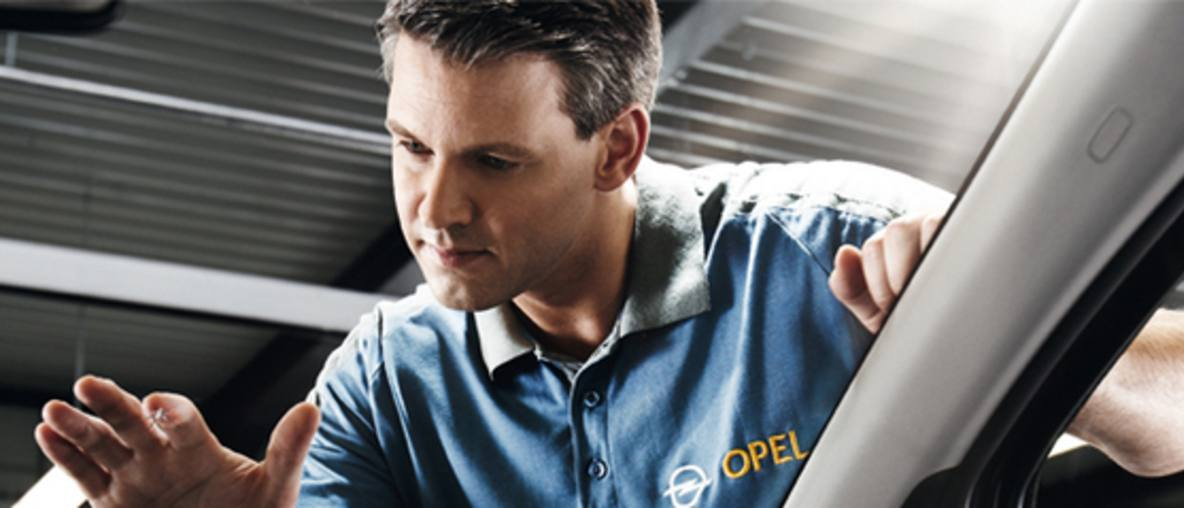 Service Opel Radacini